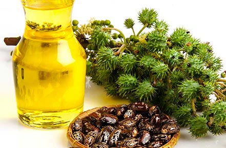 castor oil for labor